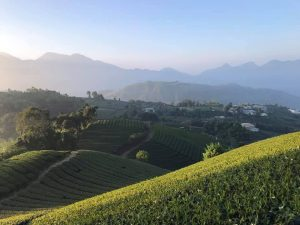 Taiwan high mountain picture